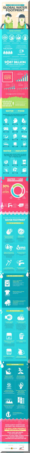 The Global Water Footprint